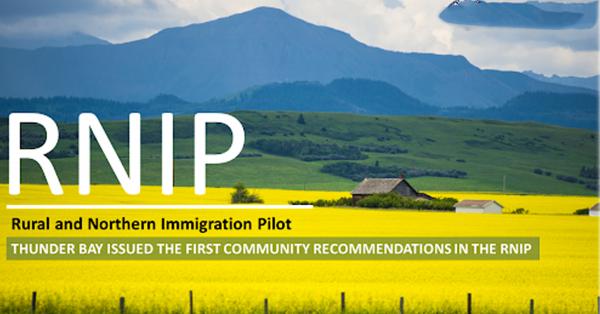 【RNIP雇主担保】8个一步到位移民职位等着您