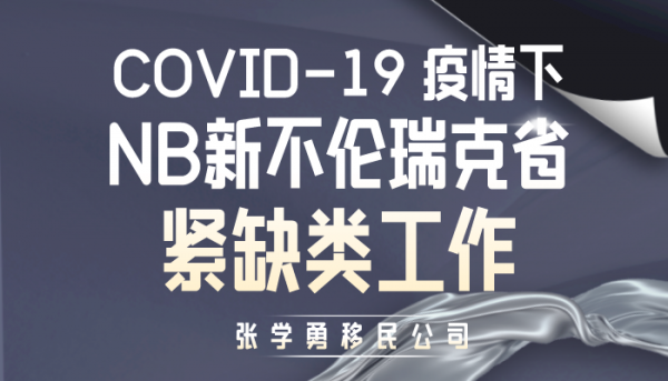 COVID-19 疫情下NB新不伦瑞克省的紧缺类工作