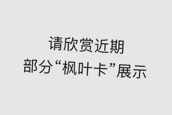 【张学勇移民】2018年第一季度成功案例知多少